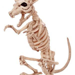"""11"""" Skeleton Rat"""