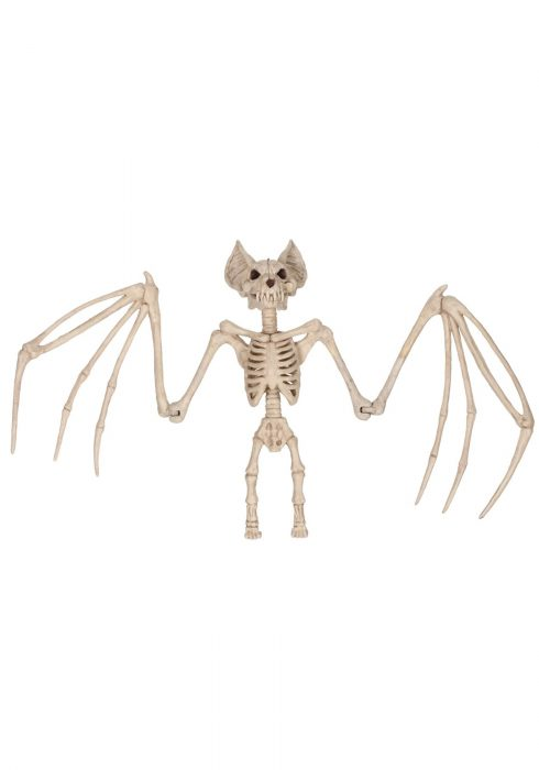 36'' Nocturnal Bat Skeleton