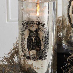 "7.75"" Mercury Glass Owl Print Vase"
