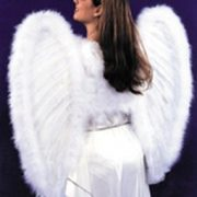 Adult Angel Costume Dress