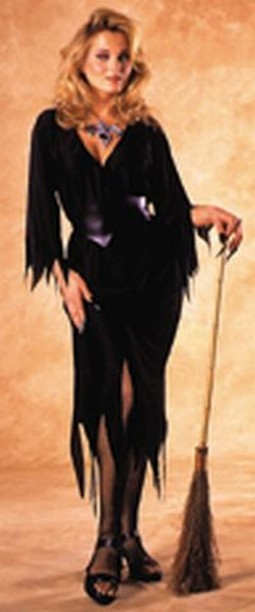 Adult Bewitching Witch Costume