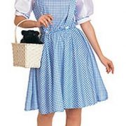 Adult Dorothy Dress Costume