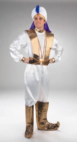 Adult Elegant Aladdin Costume