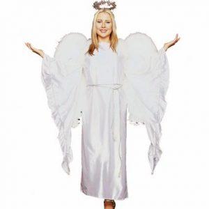Adult Elegant Angel Costume