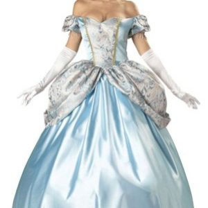 Adult Enchanting Princess Costume