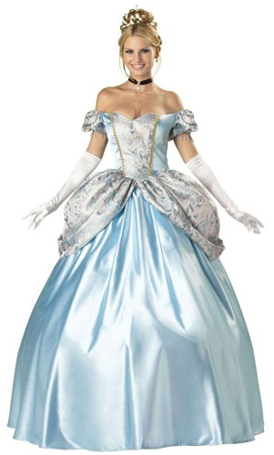 Adult Enchanting Princess Costume