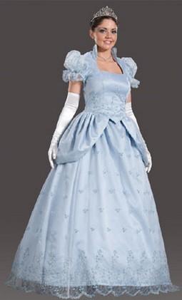 Adult Fairytale Princess Costume