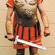 Adult Gold Roman Costume Armour
