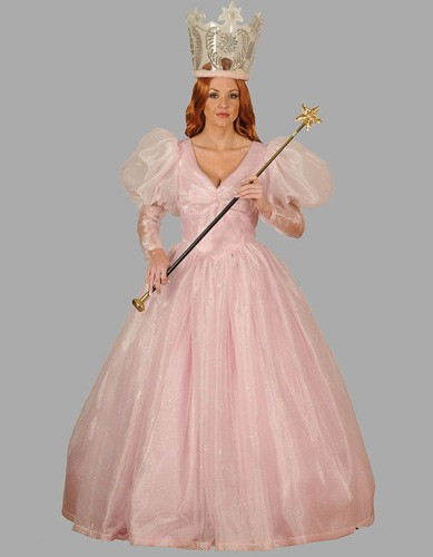 Adult Good Witch Costume