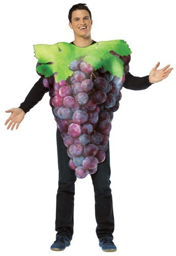 Adult Grapes Costume - purple
