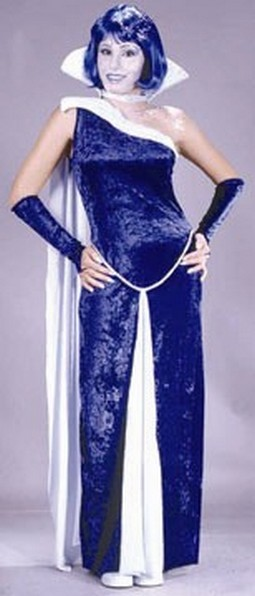 Adult Ice Gown Costume