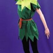 Adult Lady Peter Pan Costume