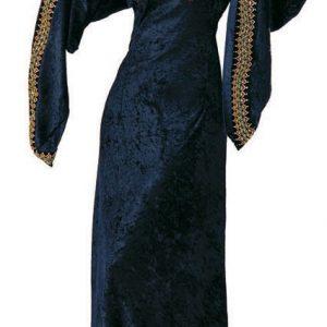 Adult Midnight Preistess Gothic Costume