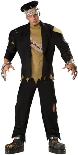Adult Monster Costume