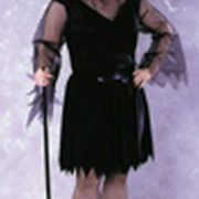 Adult Plus Size Feather Witch Costume