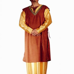 Adult Plus Size Medieval King Costume