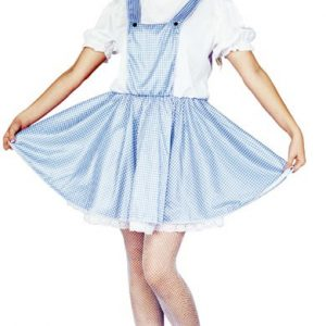 Adult Prairie Girl Costume