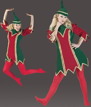 Adult Pretty Elf Costume