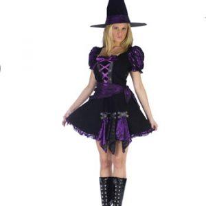 Adult Purple Punk Witch Costume