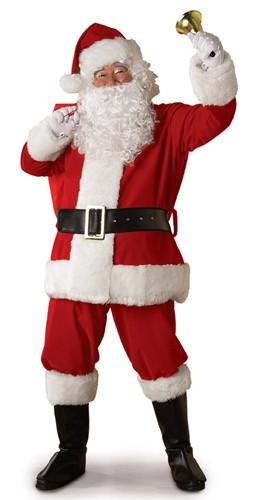 Adult Regal Plush Santa Costume