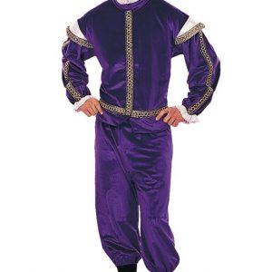 Adult Renaissance King Costume