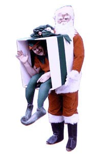Adult Santa Illusion Costume