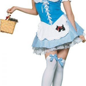 Adult Sexy Picnic Chick Costume