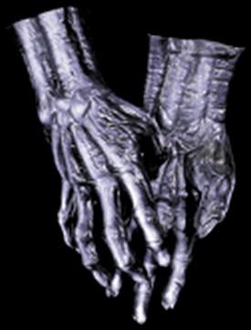 Adult Skeleton Hands Gloves Accessory