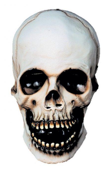Adult Skull Mask