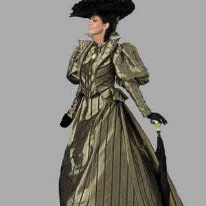 Adult Victorian Dress Costume ? Olive