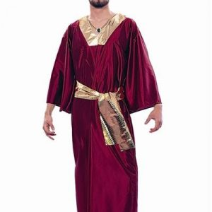 Adult Wiseman Costume - Wine