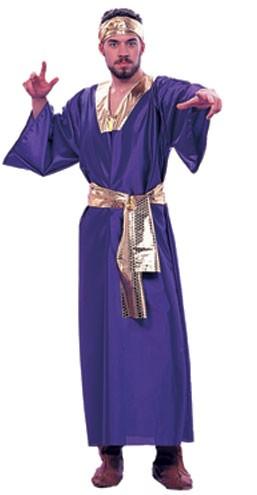 Adult Wiseman Costume