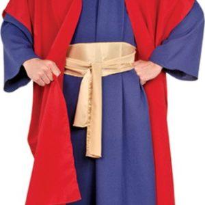 Adult Wiseman I Costume