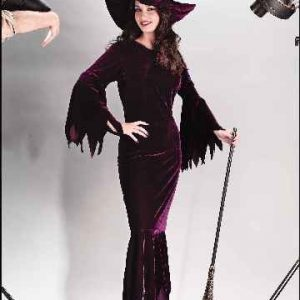 Adult Witch Elegant Plum Costume