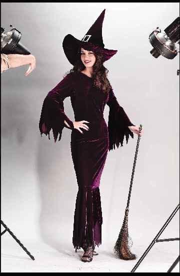 Adult Witch Elegant Plum Costume