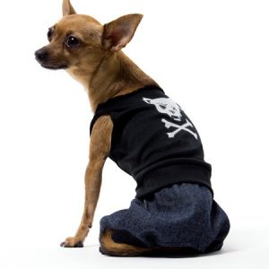 Bad Boy Dog Costume