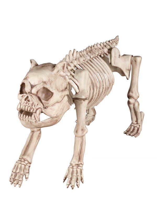 Bones the Hungry Hound Skeleton Dog