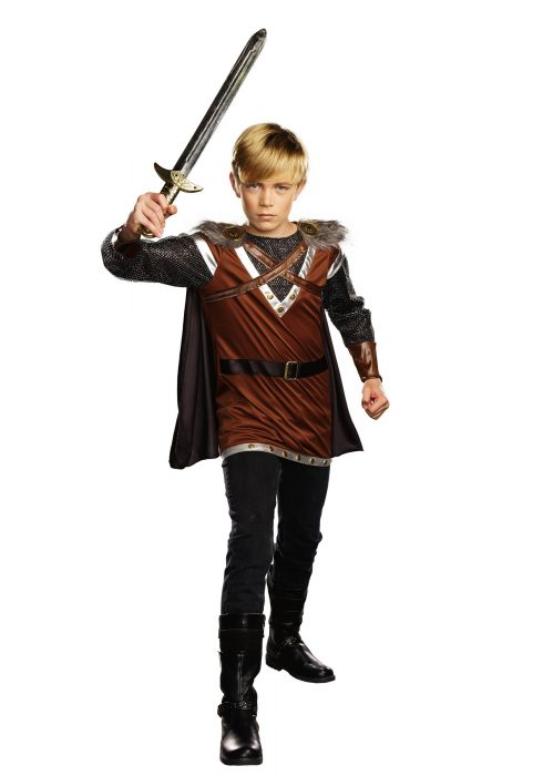 Boys Warrior Knight Costume