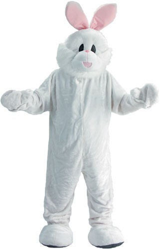 Bunny Mascot Costume Set