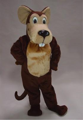 Cartoon Mouse Costume