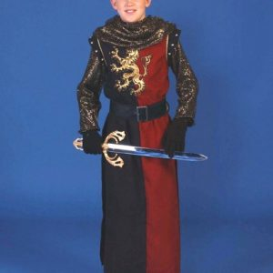 Child Medieval Warrior Costume