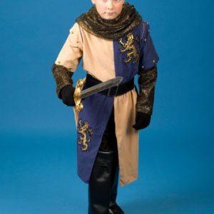 Child Renaissance Knight Costume