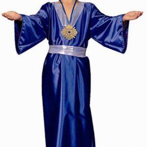 Child Wiseman Costume (blue)