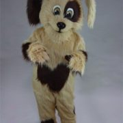Cookie Mascot Costume