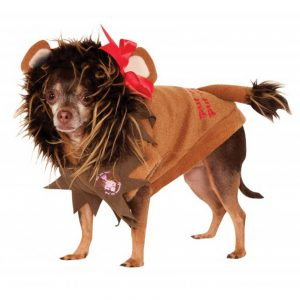 Cowardly Lion Pet Costume