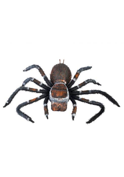Creepy Crawler Tarantula