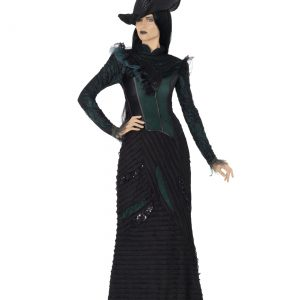 Deluxe Defying Gravity Adult Costume
