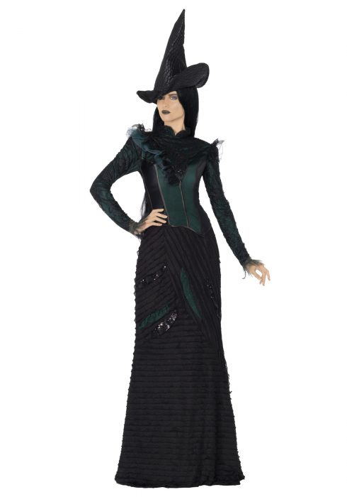 Deluxe Defying Gravity Adult Costume