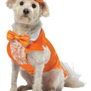 Dumb and Dumber Dog Costume - Lloyd Christmas