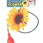 Giant Squirting Sunflower